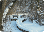 185x135-winter-steg